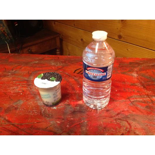 Kit formule cristalline, plus yaourt bio