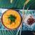 Curry vert poisson et fruits de mer - Thaïlande